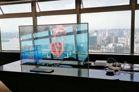 波士顿科学HoloLens项目演示